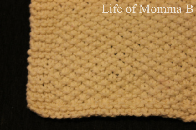 seed stitch dishcloth