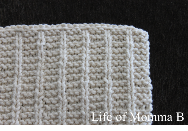 Columns Dishcloth