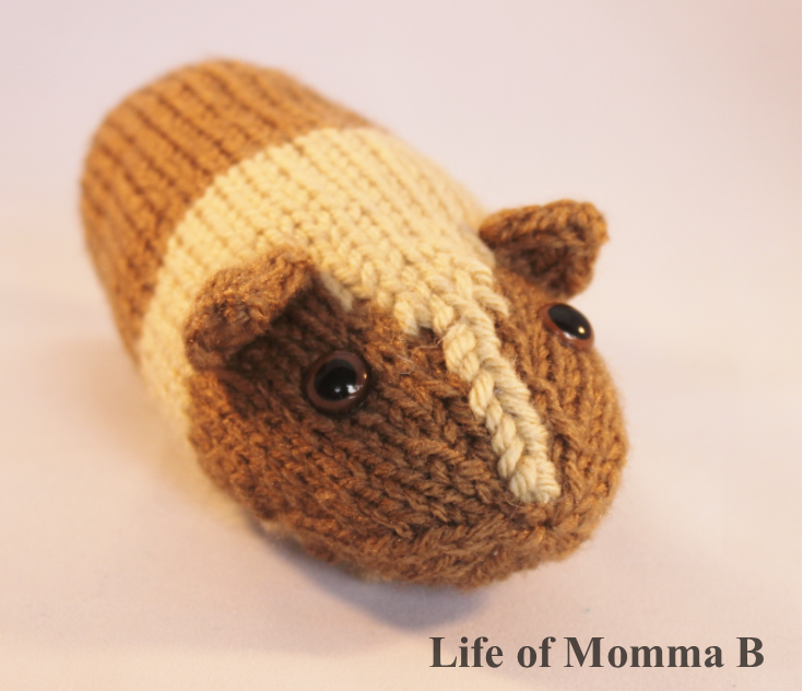 Knitting Pattern For A Guinea Pig : Knit Guinea Pig