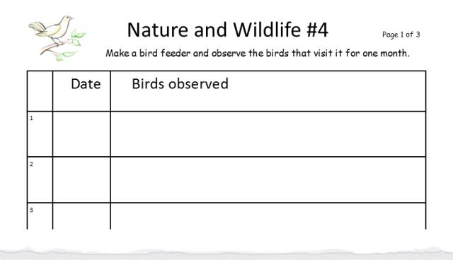 nature-and-wildlife-4